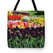 Tulip Field 1 Tote Bag