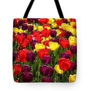 Tulip Fields Tote Bag