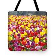 Tulip Flower Festival Art Prints Spring Tote Bag