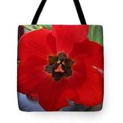 Tulip Mania 20 Tote Bag