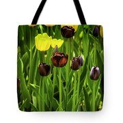 Tulip Race Time Tote Bag