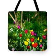 Tulip Rainbow Tote Bag