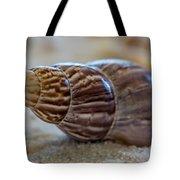 Tulip Shell - By Sabine Edrissi Tote Bag