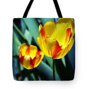 Tulip Sun Burst Tote Bag