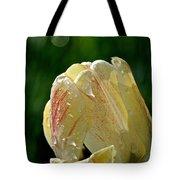 Tulip Teardrops  Tote Bag