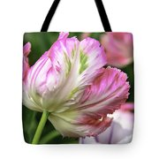 Tulip Time Pink And White Tote Bag