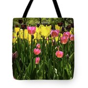 Tulip Time Pink Yellow Black Beauty Tote Bag