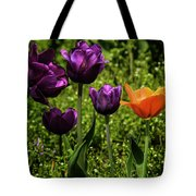 Tulip Time Purple And Orange Tote Bag