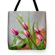 Tulip Time Tote Bag