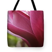 Tulip Tree Flower With Raindrops Tote Bag