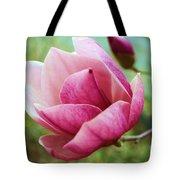 Tulip Tree In Bloom Tote Bag