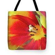 Tulip Warm Tones Tote Bag