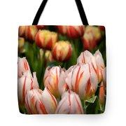 Tulips 31 Tote Bag