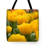 Tulips 29 Tote Bag