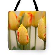 Tulips 6 Tote Bag