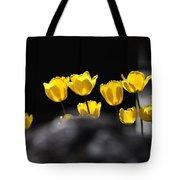 Tulips 6077 Tote Bag