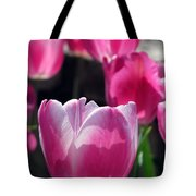 Tulips - Affectionately Yours 02 Tote Bag