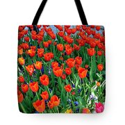 Tulips Are A Turkish Flower Bytopkapi Palace In Istanbul-turkey Tote Bag