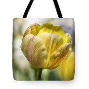 Tulips At Dallas Arboretum V27 Tote Bag