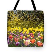 Tulips At Dallas Arboretum V32 Tote Bag