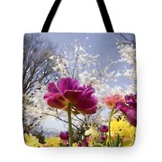 Tulips At Dallas Arboretum V46 Tote Bag
