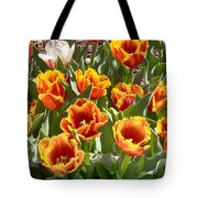 Tulips At Dallas Arboretum V71 Tote Bag