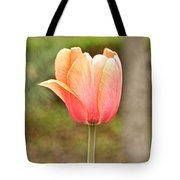 Tulips At Thanksgiving Point - 18 Tote Bag