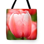 Tulips At Thanksgiving Point - 19 Tote Bag
