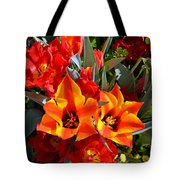 Tulips At The Pier Tote Bag