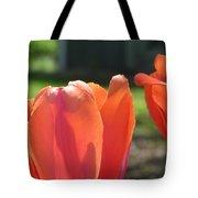 Tulips Backlit 2 Tote Bag