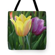 Tulips - Caring Thoughts 03 Tote Bag