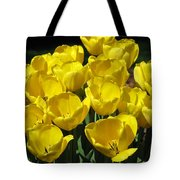 Tulips - Field With Love 17 Tote Bag