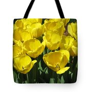 Tulips - Field With Love 18 Tote Bag