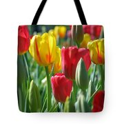 Tulips - Field With Love 22 Tote Bag