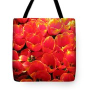 Tulips - Field With Love 28 Tote Bag