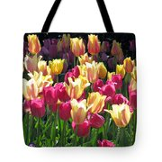 Tulips - Field With Love 35 Tote Bag
