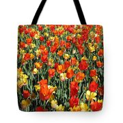 Tulips - Field With Love 51 Tote Bag