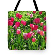 Tulips - Field With Love 54 Tote Bag