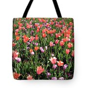 Tulips - Field With Love 55 Tote Bag