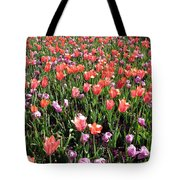Tulips - Field With Love 56 Tote Bag