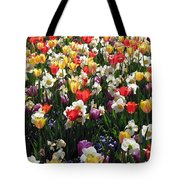 Tulips - Field With Love 57 Tote Bag