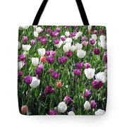 Tulips - Field With Love 60 Tote Bag