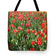 Tulips - Field With Love 61 Tote Bag