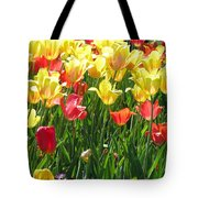 Tulips - Field With Love 65 Tote Bag