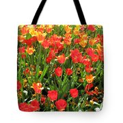 Tulips - Field With Love 68 Tote Bag