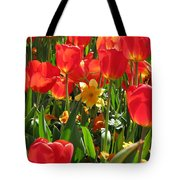 Tulips - Field With Love 71 Tote Bag