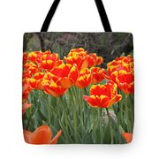 Tulips From Brooklyn Tote Bag