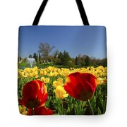 Tulips Galore  Tote Bag