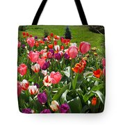 Tulips Garden Art Prints Colorful Spring Floral Tote Bag