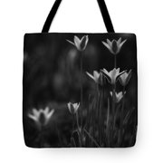 Tulips In Black And White Tote Bag